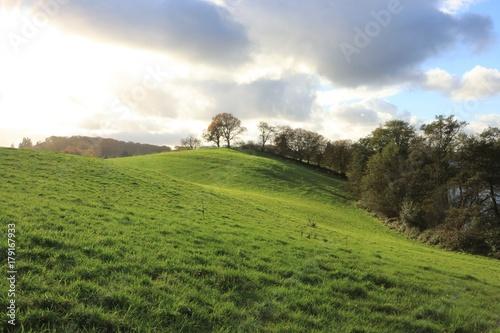 Foto  malerische sanfte Hügel in der herbstlichen Holsteinischen Schweiz