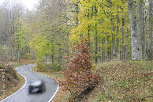 Zdjęcie XXL Samochód na drodze w pierwszych biegach w górach aralar, Nawarra