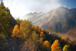 mountain autumn landscape with smoke and fog in the mountains and yellowed beautiful trees