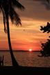 Florida Sundown