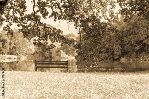 Fototapeta  Samotna ławeczka nad jeziorem w parku, sepia.