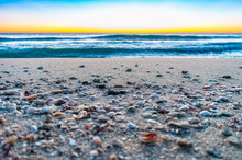 Seashells And Pebbles On A Sandy Beach Shore With Waves And Morning Sky In The Background