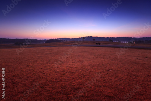 Foto op Aluminium Bordeaux Soil path with field in the morning at Thung Kamang nature park, Chaiyaphum, Thailand