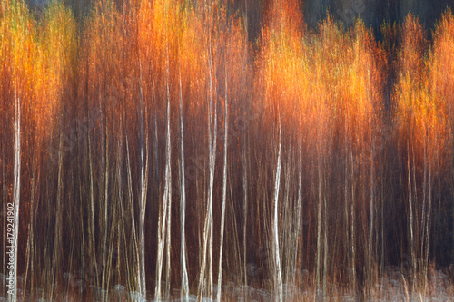 Autumnal textural scenic background with motion blur, toned in vintage style