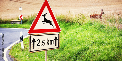 Spoed Foto op Canvas Ree Road Sign and Deer next to a Country Road, Germany