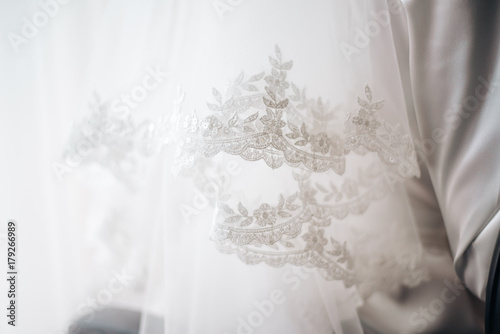 lace veil Canvas Print