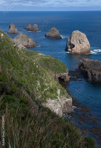 Foto op Canvas Cathedral Cove Nuggets point New Zealand. Cattlins