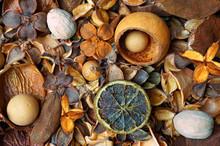 Fruity Autumn Potpourri