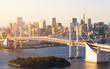 Rainbow bridge and city view at Odaiba Tokyo Japan