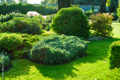 Recess Fitting Garden Shrubs in landscape design