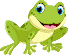 Cute Frog Cartoon Isolated On ...