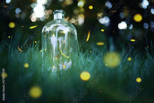 Fotografija Fireflies in a jar.