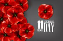 Remembrance Day - Veteran's Da...