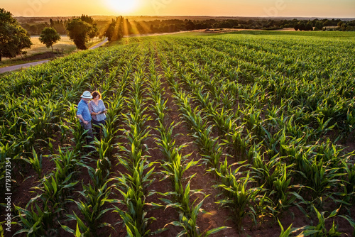 A farmer and his wife in their cornfield at sunset using a tablet