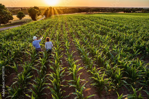 Photo A farmer and his wife standing in their cornfield at sunset