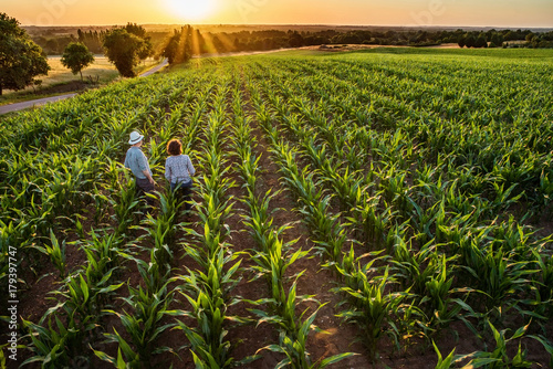 A farmer and his wife standing in their cornfield at sunset