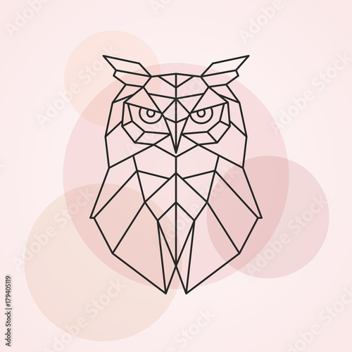 Canvas Prints Owls cartoon Geometric head of an owl. Abstract vector illustration of a wild bird.