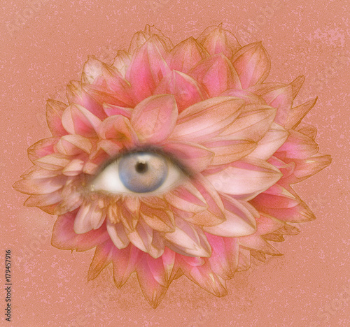 Montage in der Fensternische Surrealismus Eye of Petals