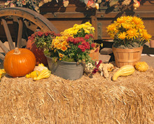 Fall Decor On A Hay Bale