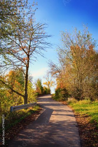 Poster Natuur Autumnal hiking trail in Nierstein