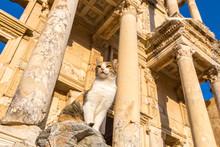 Celsius Library In Ephesus, Tu...