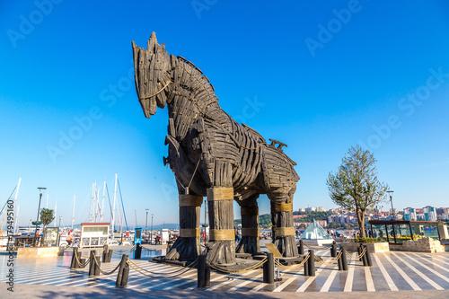 Fototapeta Trojan horse obraz
