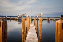 Summer Lake And Dock Backgroun...