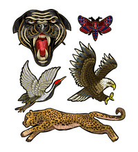 Panther, Butterfly, Crane, Eag...