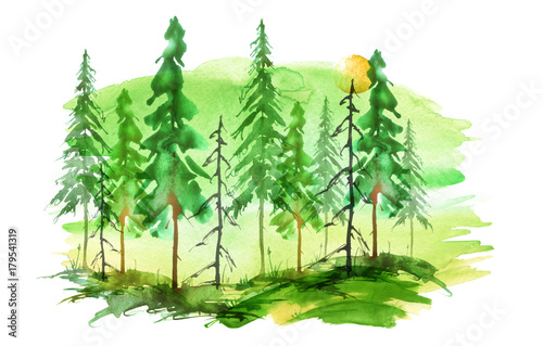 Watercolor group of trees - fir, pine, cedar, fir-tree. green, summer  forest, landscape, forest landscape. Watercolor card. Abstract splash of  paint. - Buy this stock illustration and explore similar illustrations at  Adobe