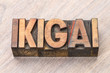 ikigai word abstract - a reason for being