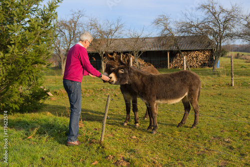Man feeding couple easels in meadows