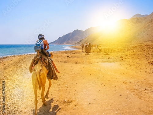 In de dag Egypte tourists and undefined woman on camels ride with Bedouins along the coast of the golden city famous for its sunsets and Blue Hole. Dahab, Red Sea, Sinai Peninsula, Egypt
