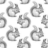 Wzór z wiewiórki. - 179680751