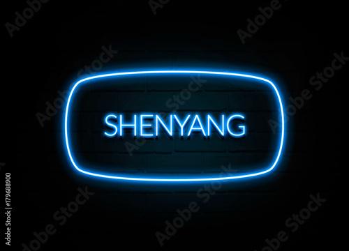Fotografie, Obraz  Shenyang  - colorful Neon Sign on brickwall