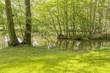 idyllic park scenery