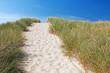 Weg über Dünen zum Strand bei Kampen auf Sylt an der Nordsee, Schleswig-Holstein
