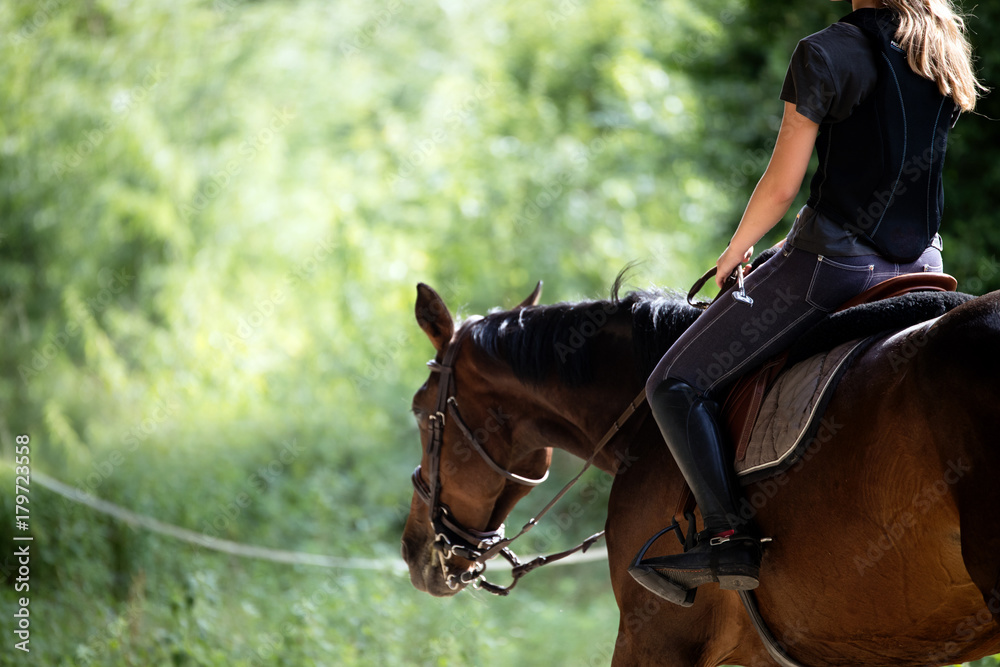 Fototapety, obrazy: Portrait of young woman riding her horse