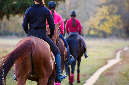 Fotobehang Paardrijden Group of teenage girls riding horses in autumn park. Equestrian sport background with copy space