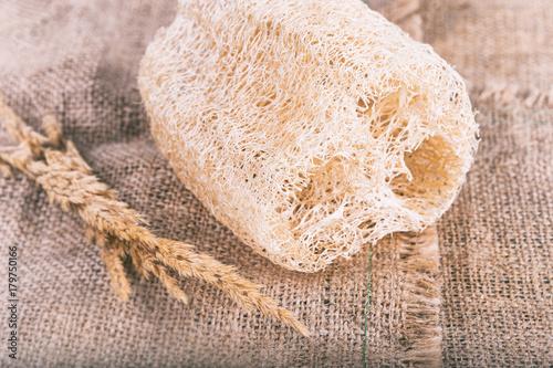 Close up of Loofah natural Body Scrub