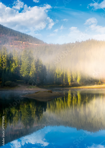 lake in spruce forest at foggy sunrise. gorgeous autumn landscape in Carpathian mountains
