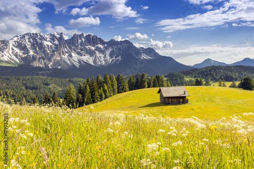 Fotografie, Obraz  Mountain Hut in the pastures of Colbleggio