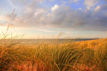 Panel Szklany Podświetlane Vintage Lake michigan dune grasses