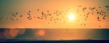 Panorama Ocean Beach At Sunset...