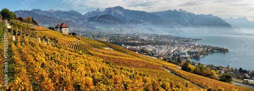 Fotografia panorama of autumn vineyards in Switzerland