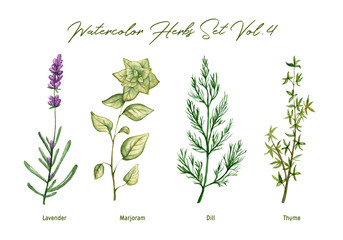 Plakat Watercolor herbs set volume 4. Illustration in high resolution.