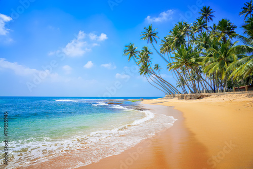 Acrylic Prints Beach Untouched beautiful beach on the Indian Ocean
