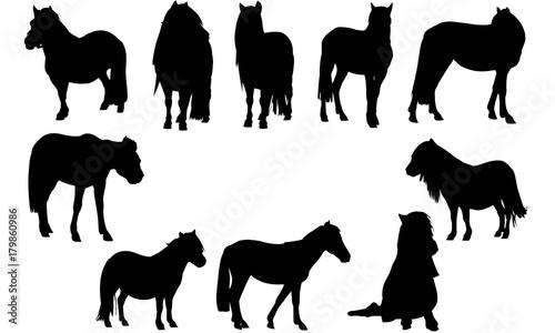 Fototapeta Pony Silhouette Vector Graphics