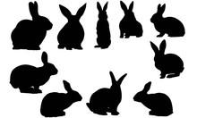 Rabbit Silhouette Vector Graph...