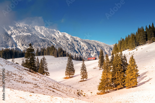 Plakat krajobraz przyrody, śnieżne góry Piatra Craiului (Karpaty) w zimie, w Rumunii. las, jodły, dzikie szczyty górskie z ciężkim śniegiem w okresie zimowym.