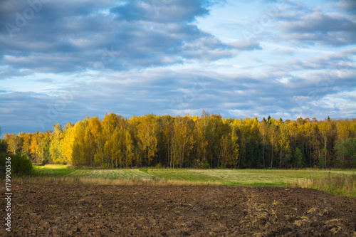 Foto op Aluminium Blauw Autumn landscape - plowed field and forest in the background